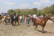 Alistando los caballos para la competencia